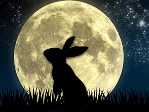 LANDO wünscht frohe Ostern!