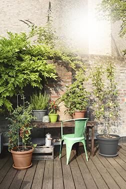 Pflanzgefäße gestalten im modernen Garten