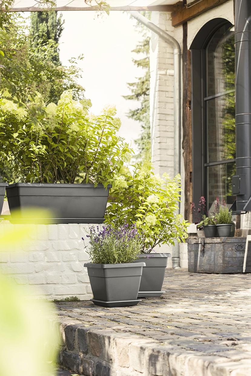 Gestaltung einer Terrasse mit Pflanzgefäßen