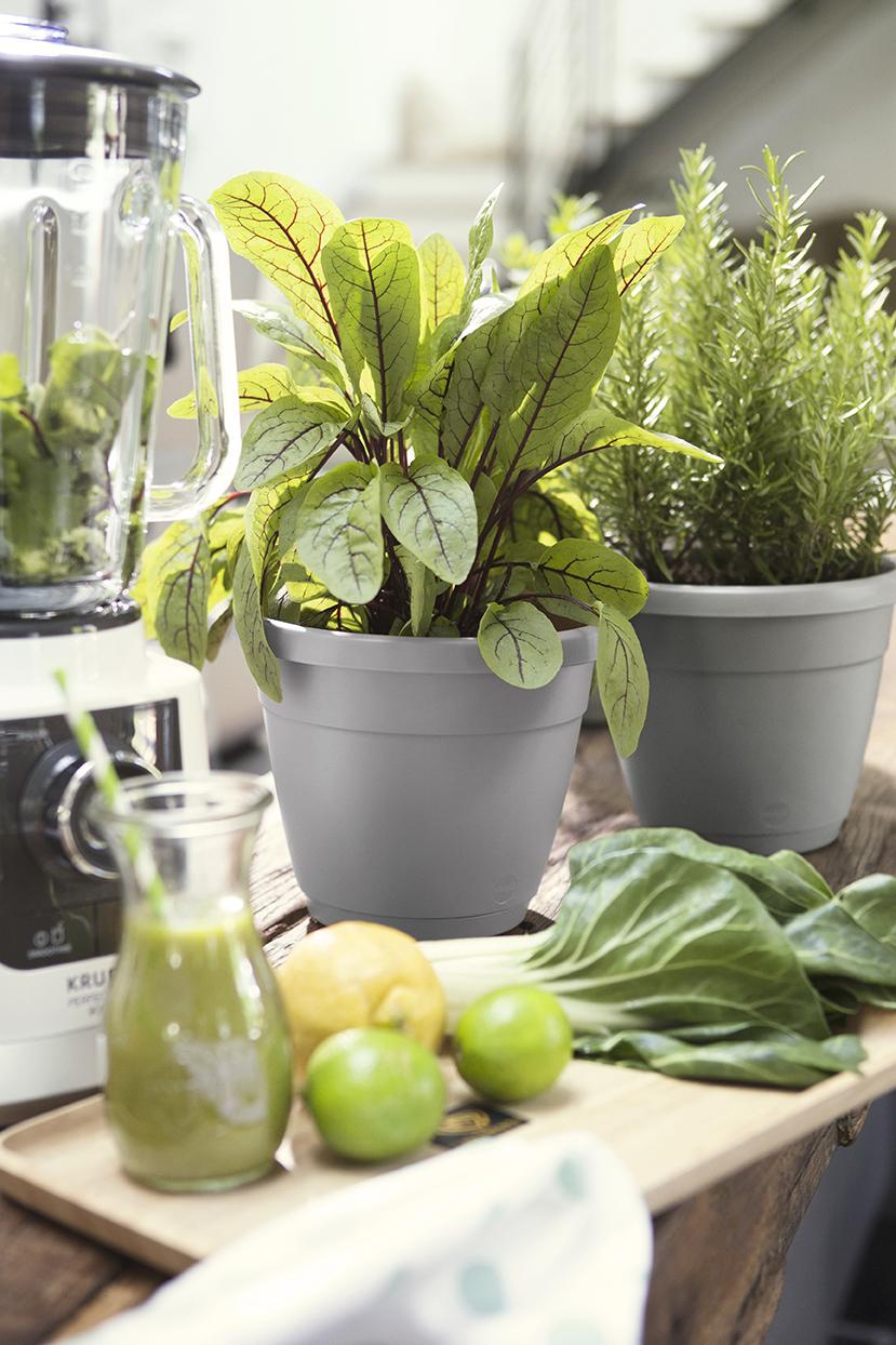 Gartengestaltung mit schönen Pflanzgefäßen