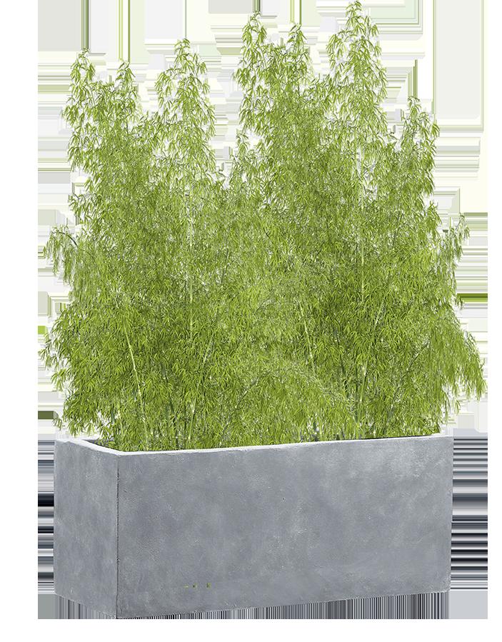 moderne Pflanzgefäße im Garten
