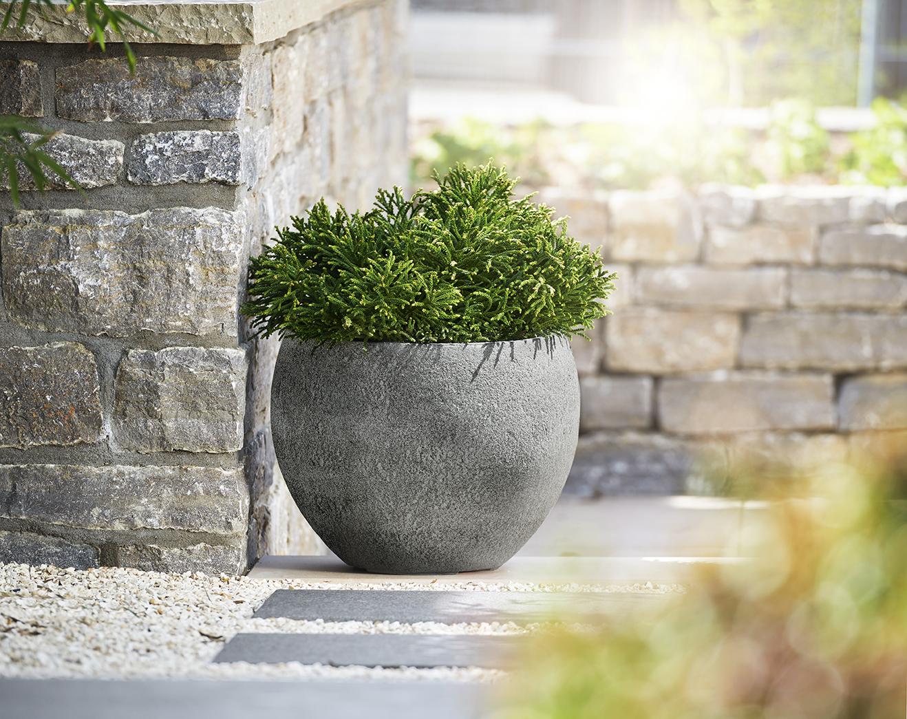 Garten mit einem Pflanzgefäß