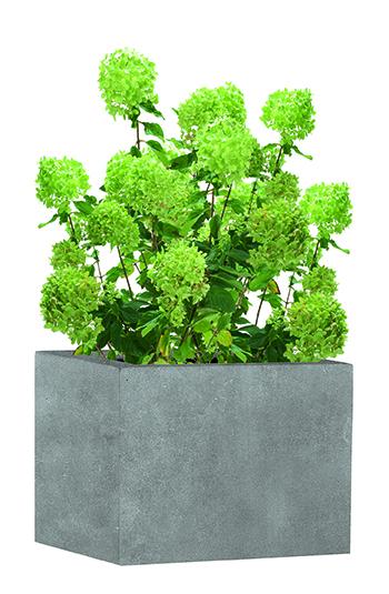 Gestaltung mit Pflanzgefäßen im Garten