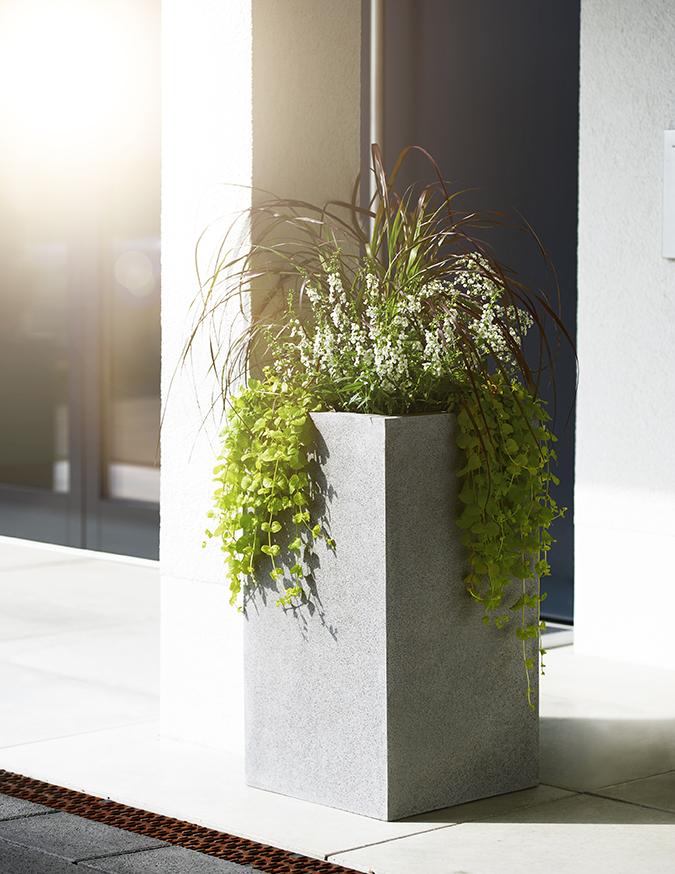 schönes pflanzgefäß an einer Terrasse