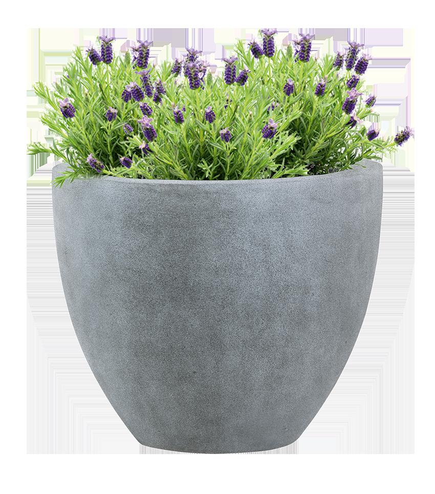 Pflanzgefäß mit Lavendel Bepflanzung
