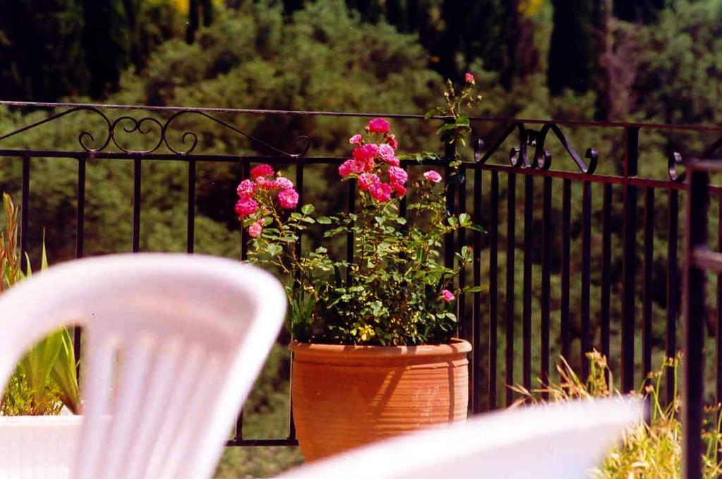 ANALOG,...die Blumendeko ist überall zauberhaft