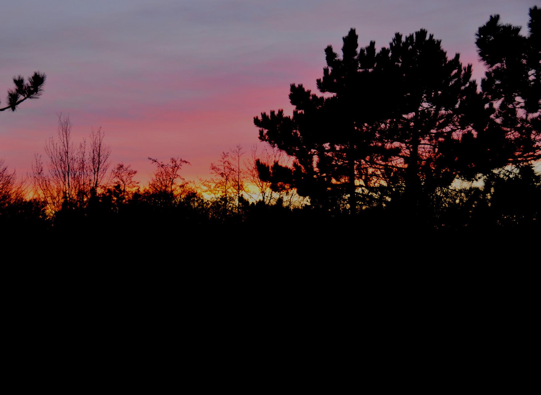 am Abend , der Blick aus meinem Fenster