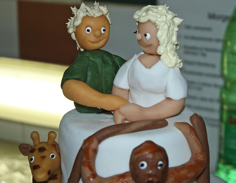 Hochzeitstörtchen..:-), für die Medizinerin und den Tierpfleger..;-)
