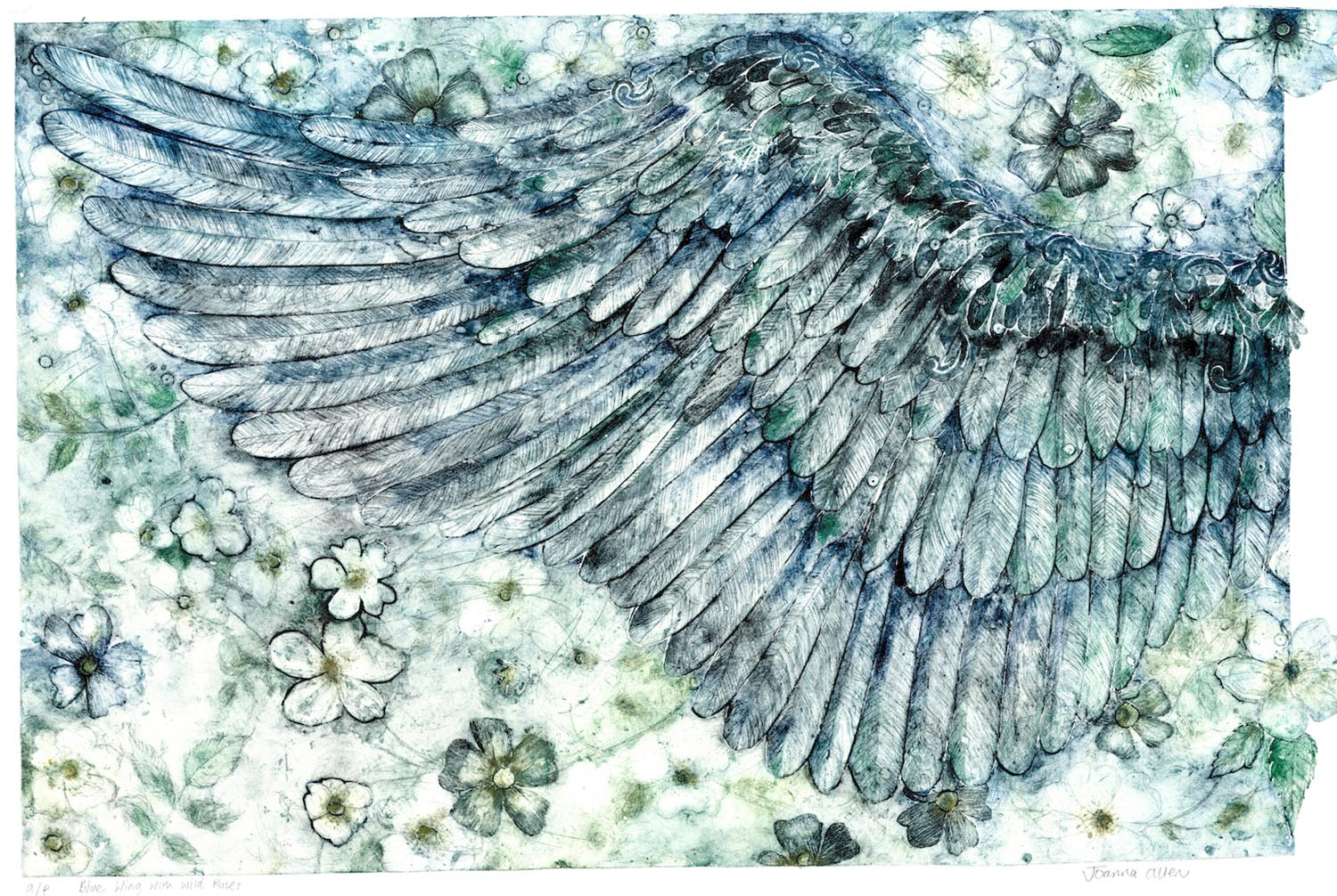 Wing Blues - handcoloured collagraph image 70x45cm white wood framed 92x69cm £475