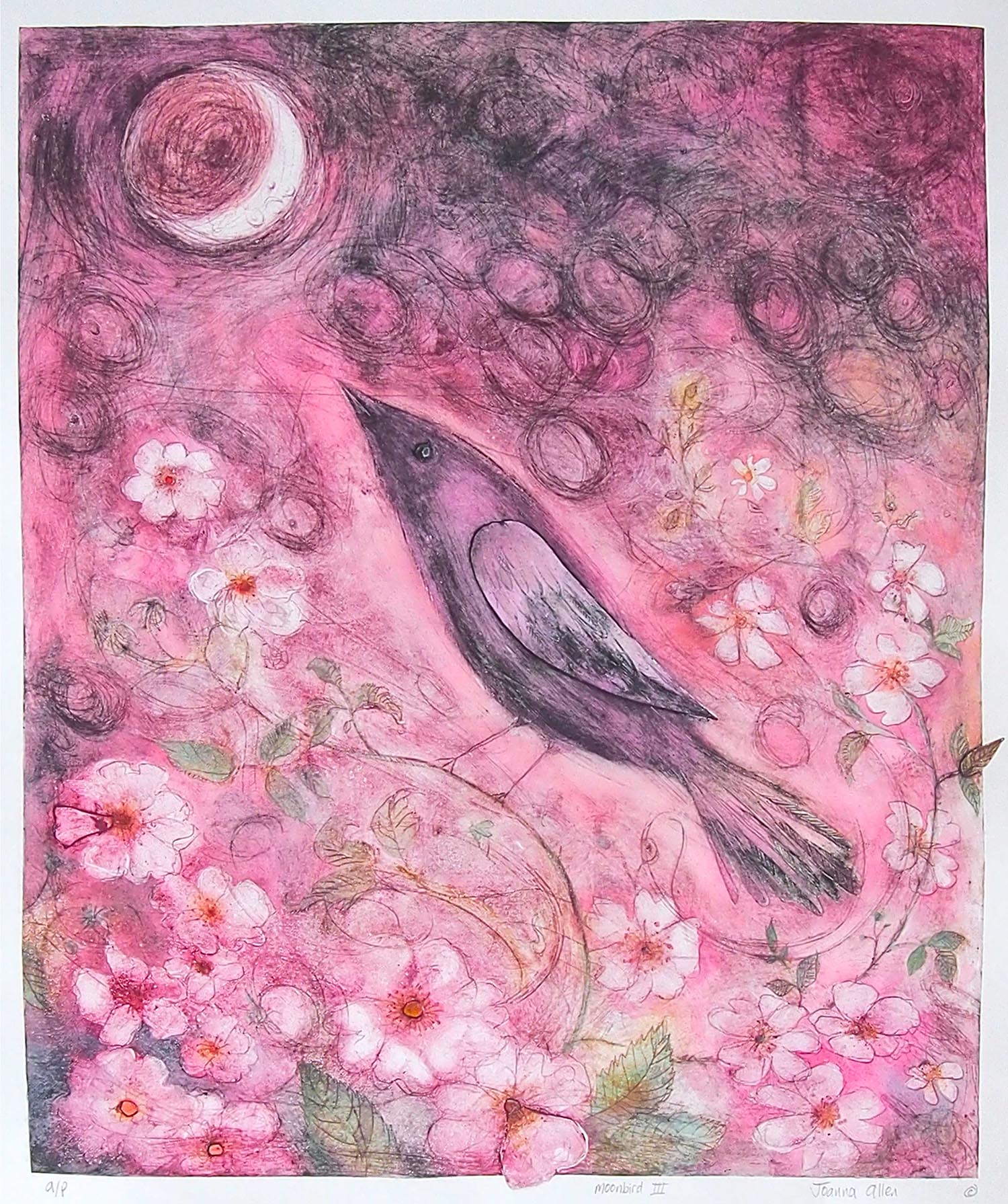 Pink Moon Bird - handcoloured drypoint image 50x41cm white wood frame 68x76cm £245