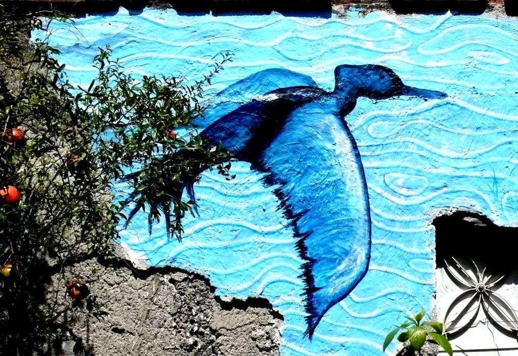 Pato buzo. Acrilico sobre argamasa. Patio. Mexico City.2009