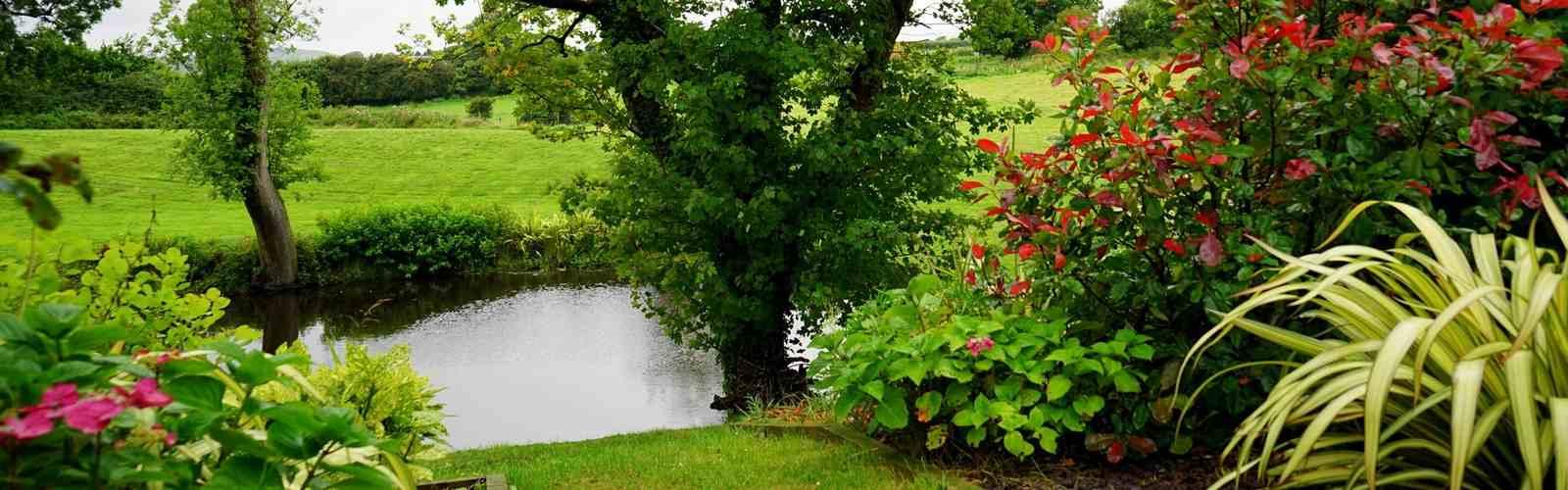 Wie wäre es mit einem Naturpool oder Teich ?