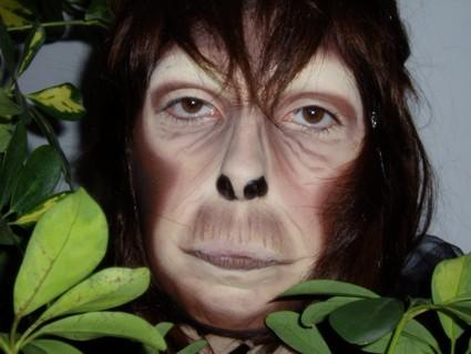 caracterización simio