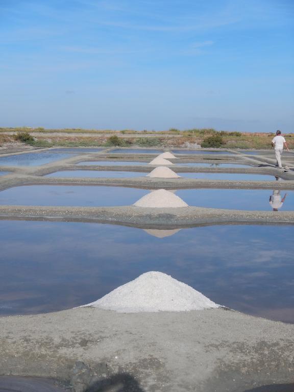 sel de Noirmoutier pour pain petit épeautre bio 34 Hérault
