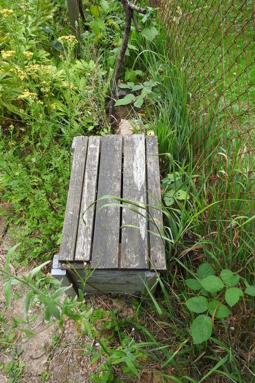 Auf diesem selbst gebauten Kasten setze ich mich gerne zum Fotografieren. Upps seht das nächste Bild.