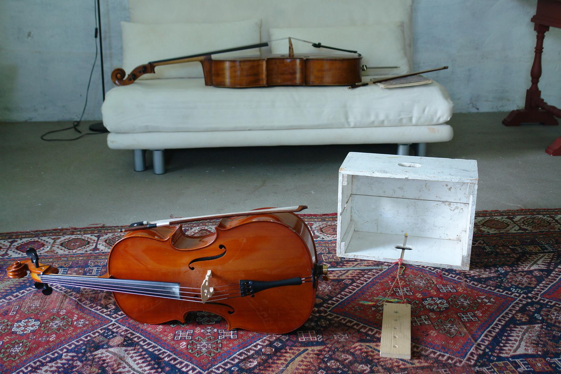 (c) Mor-cello.at