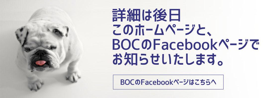 BOCのFaceBookで情報発信中