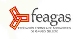 Feagas