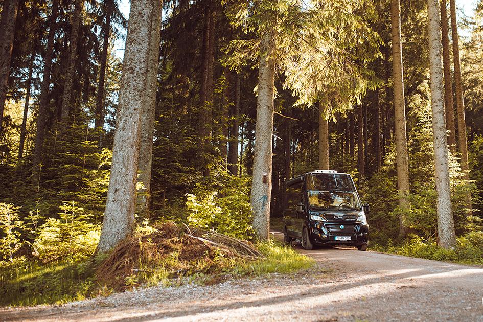 Ein BoxStar geht im Walde... , Hirschbühl Caravan Rental, Wohnmobil mieten in Tübingen