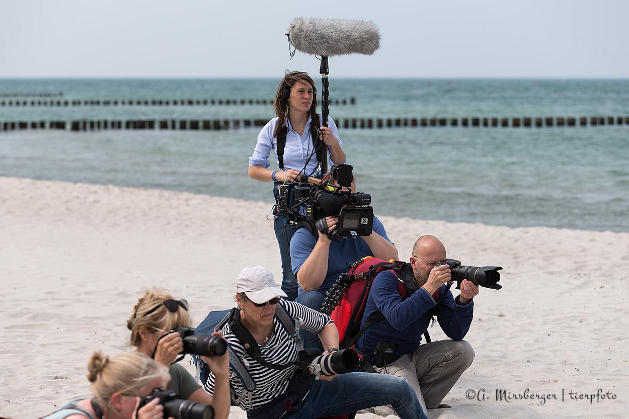 Das Filmteam im Einsatz