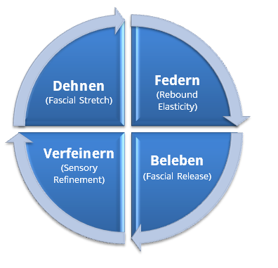 Faszientraining - 4 Komponenten