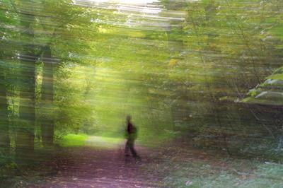 by Maja Geisel - pixelio.de