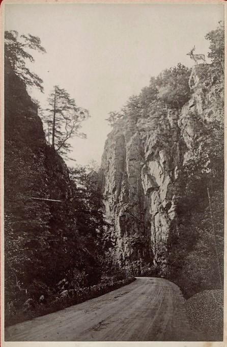 Hirschsprung 1885