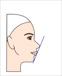 横顔・鼻の高さのゴールデンバランス
