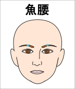 魚腰(ぎょよう)