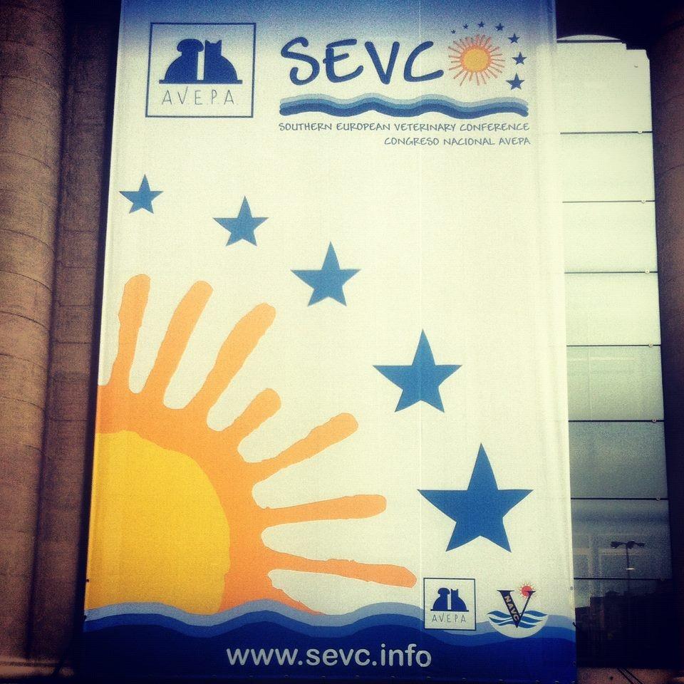 SEVC 2012 - 47º Congreso Nacional AVEPA
