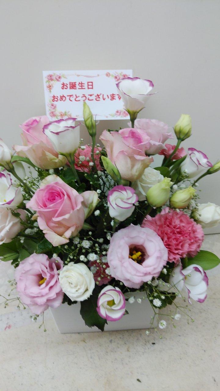 誕生日・お供え ¥3300