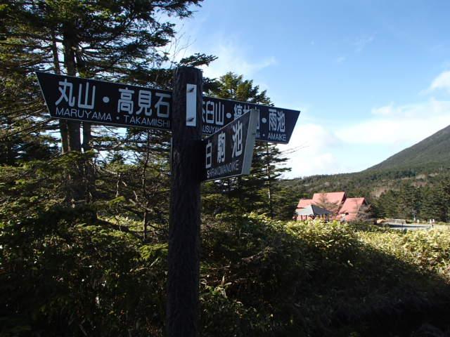 おすすめのコケの森トレッキングコース 丸山
