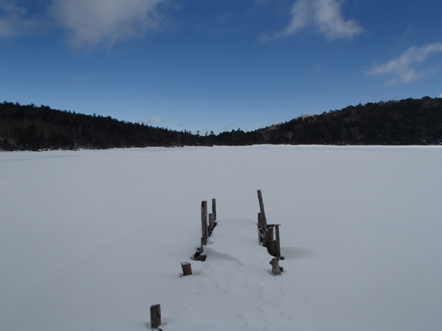 八ヶ岳おすすめのスノーシューコース 白駒池1泊コース