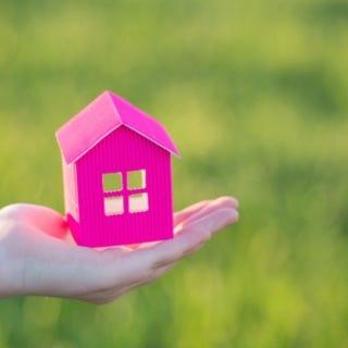 Immobilien & Grundstücksclearing