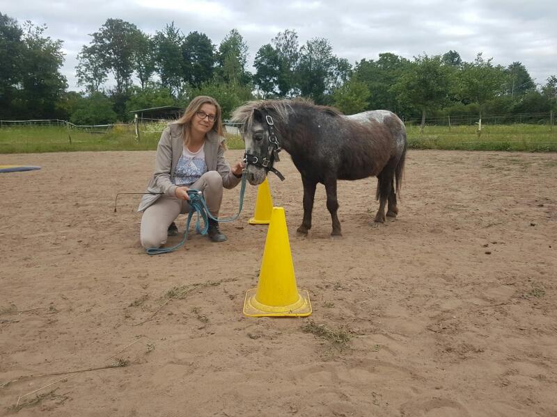 Dualini® das Basistraining für Kinder am und auf dem Pferd