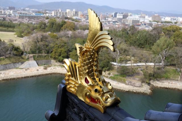歴代の愛知県知事を九星気学と宿曜占星術で見てみると?共通点は?
