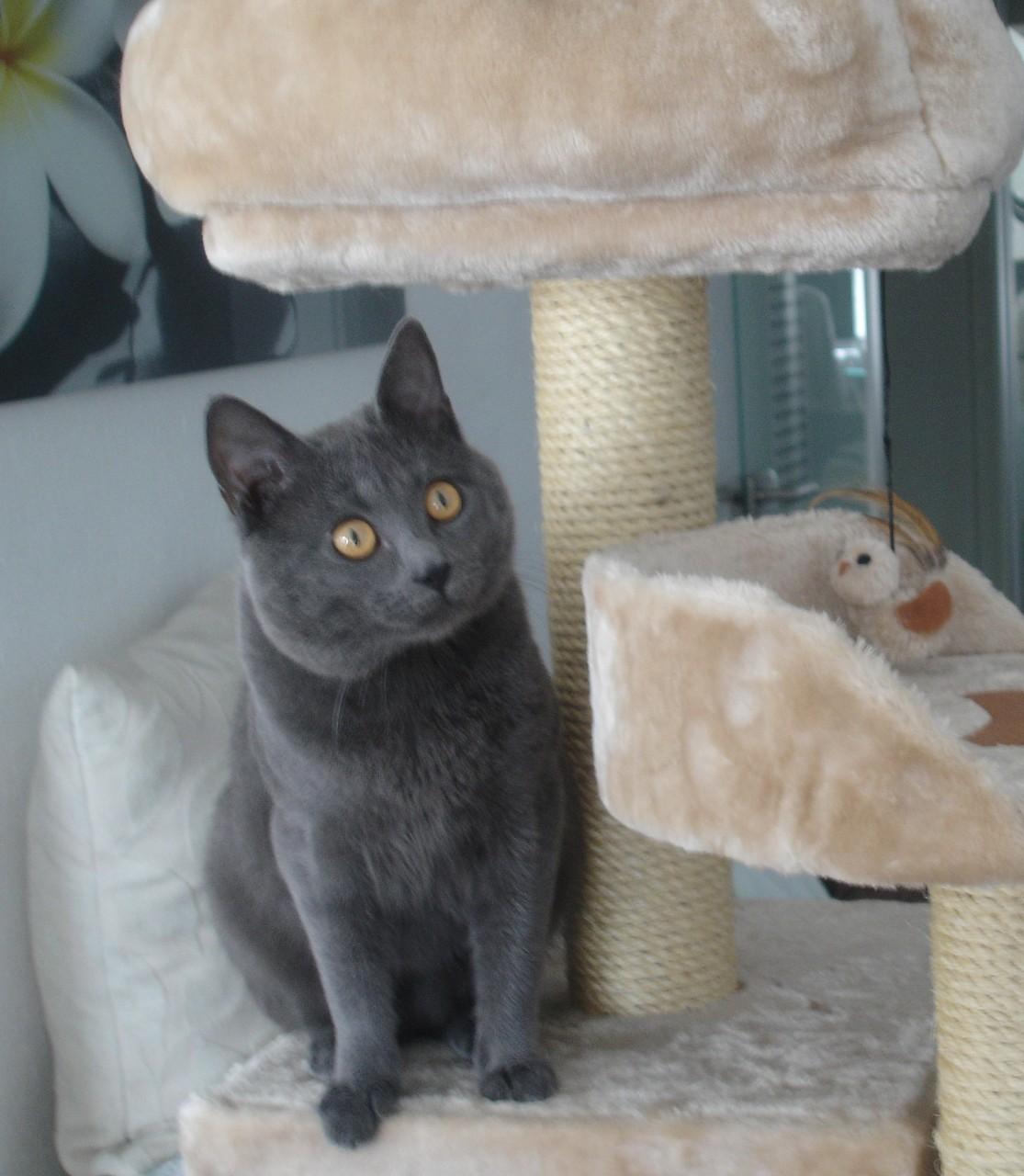 Kronos mit einem Jahr und drei Monaten