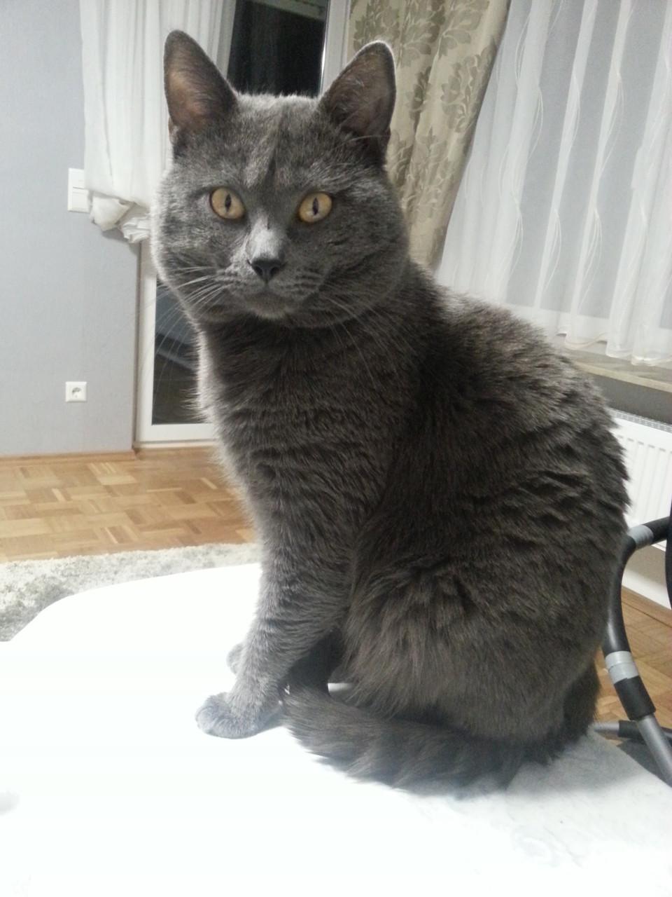 Kronos mit 2 Jahren und 10 Monaten