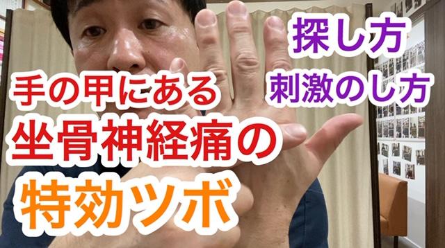 手甲の坐骨神経痛特効ツボについては、下記をご覧ください。