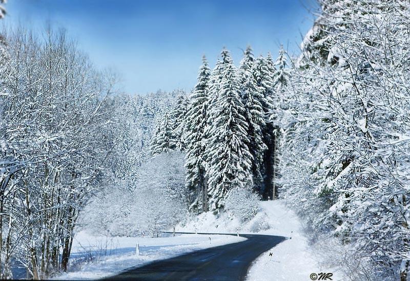 Winter übersetzung