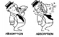 differ between adsorption and absorption