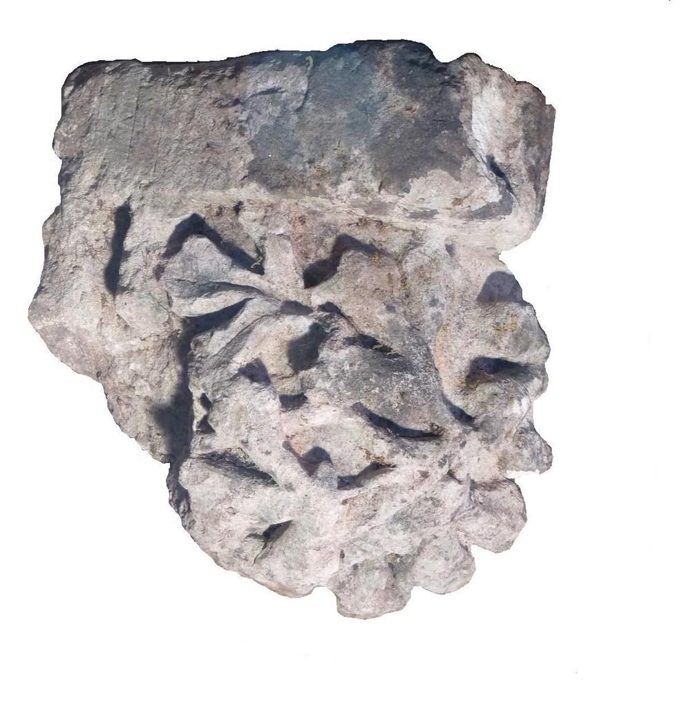 Cul de lampe représentant des feuillages déposé dans le musée XIII°S