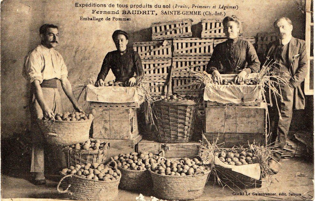 Tri de fruits Chez Brossard, vers 1912 1914