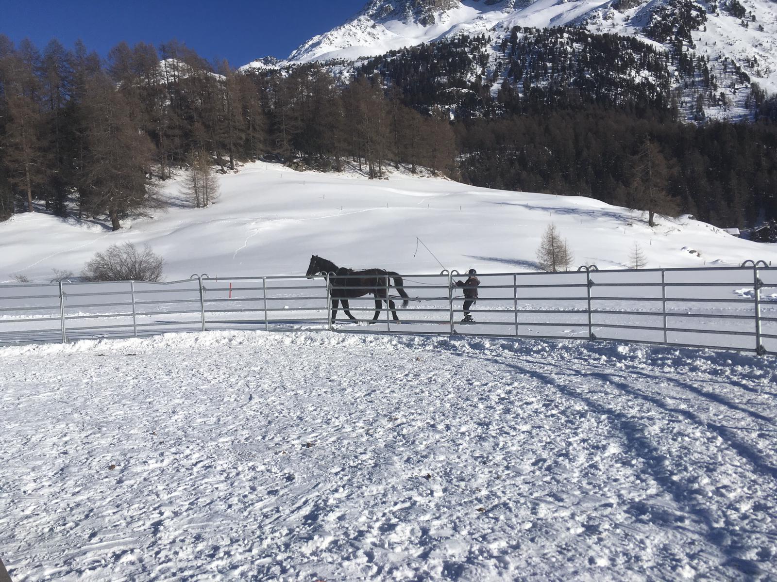 Skijören