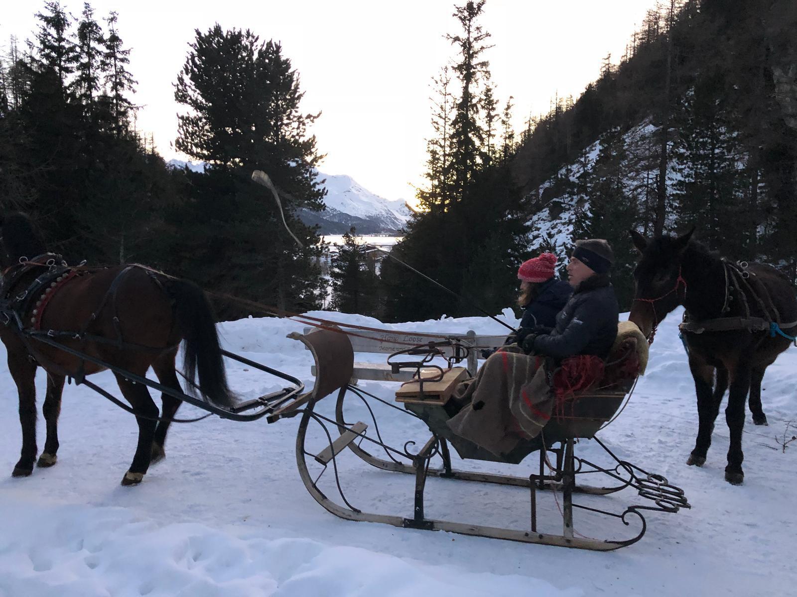 Pferdeschlitten fahren