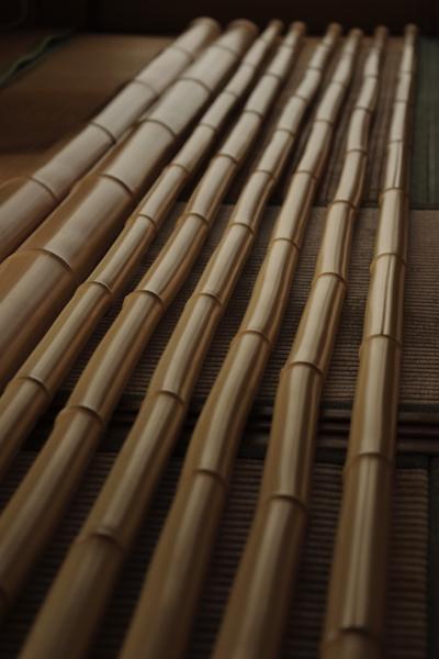 たいへん長く、そして美しい白竹