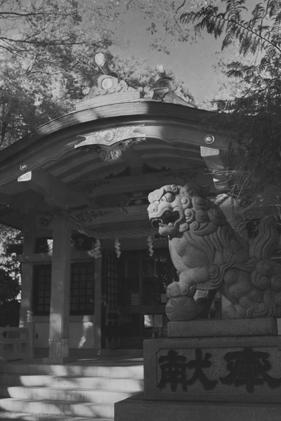 おなじく世田谷線沿いの六所神社へも