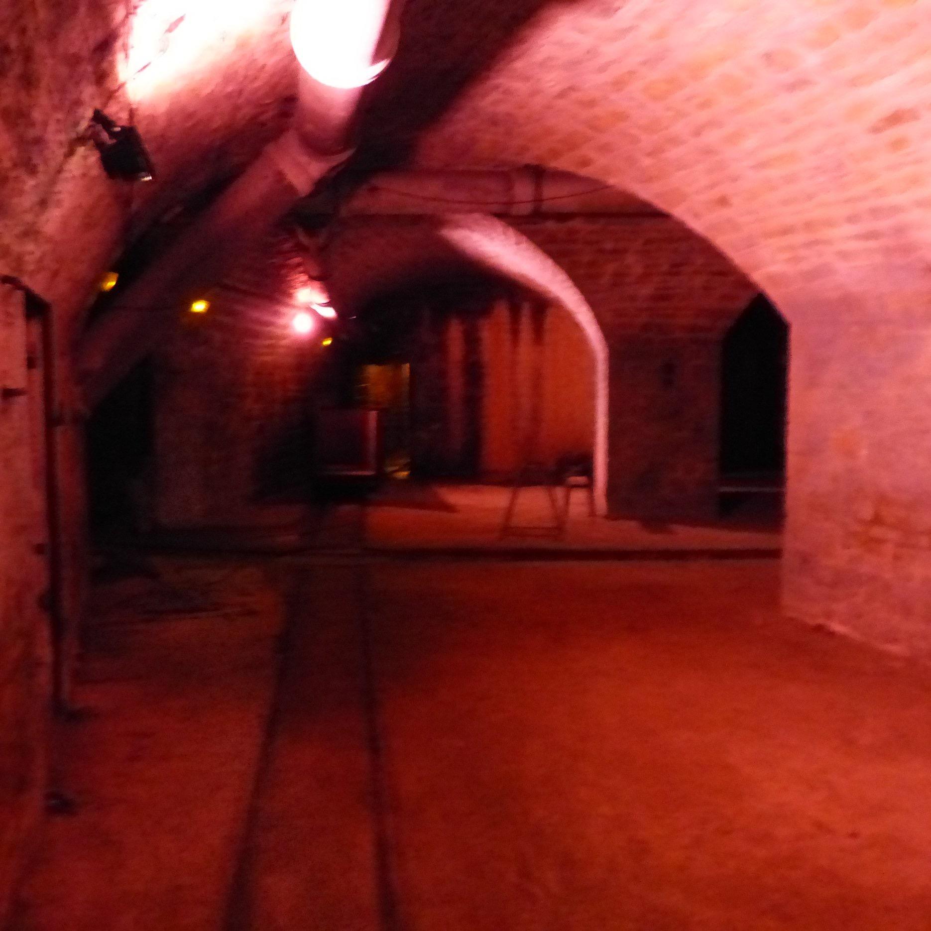 Champignonnière de Caluire - Fort de Montessuy (Photo J.-F. Godet)