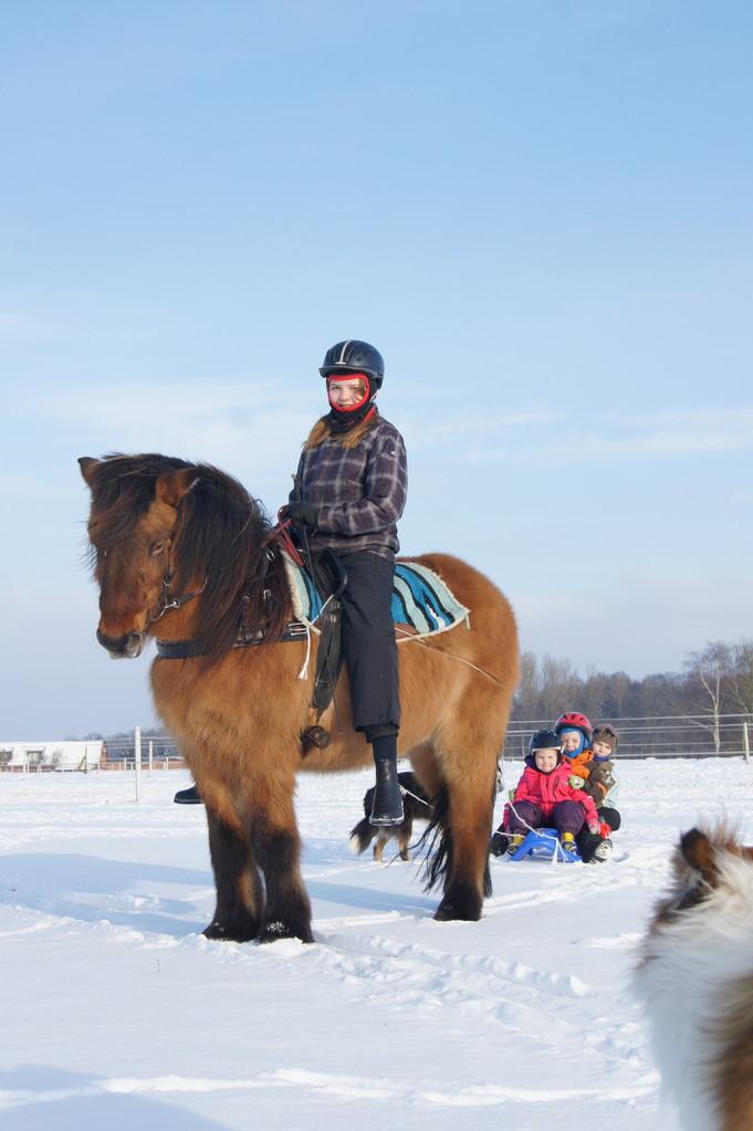 Schlittenfahrt im Winter 2012/13