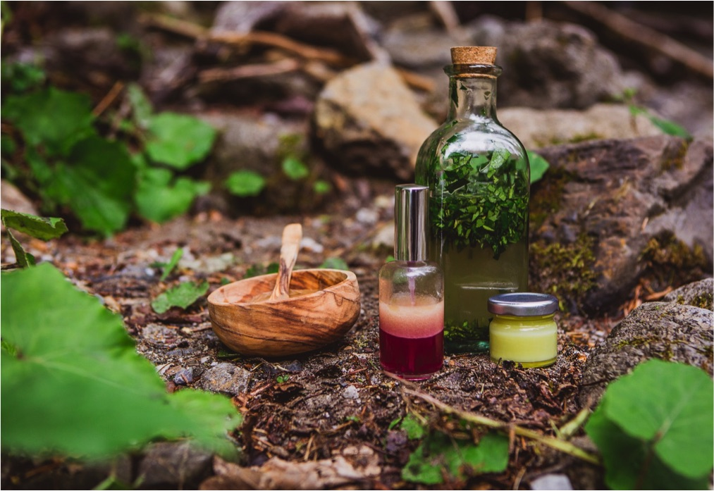 Grüne Kosmetik Produkte mit Wildpflanzen (Foto: Gerhild Anderwald)